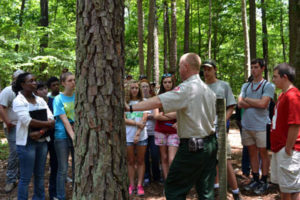 Tree identification helps foresters begin to make land-use and management decisions