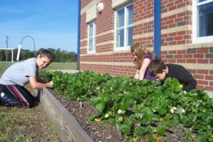 kids planting in raised bed