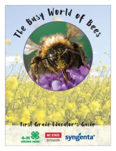 Image of the cover for busy bee curriculum